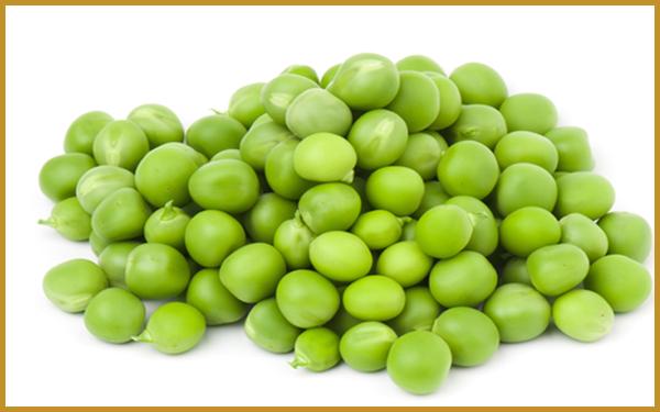 Food Stuff Trading Dubai, Food Products Supplier UAE